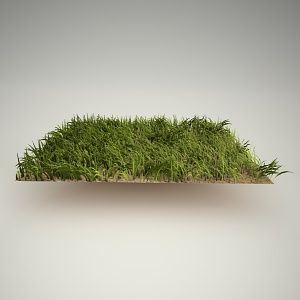 grass free 3d model  Free 3d models  Pinterest  Models and 3d