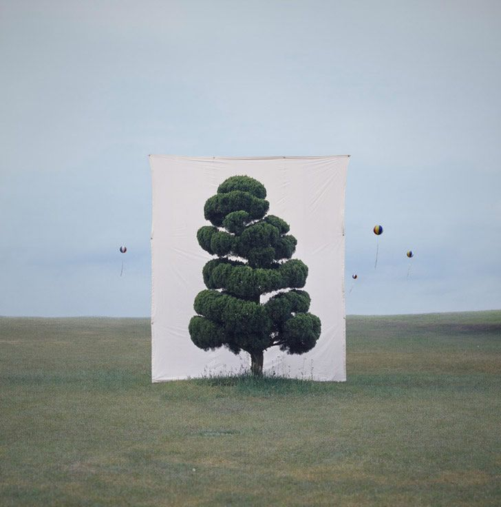 """Korean artist Myoung Ho Lee had created a large-scale outdoor installation that explores scale and perception. """"The series [titled """"Tree""""] includes diverse species of trees photographed with a 4×5 camera in a variety of seasons and at different times of day. Mr. Lee allows the tree's natural surroundings to fill the frame around the canvas, transforming the backdrop into an integral part of the subject. Centered in the graphic compositions, the canvas defines the form of the tree and…"""