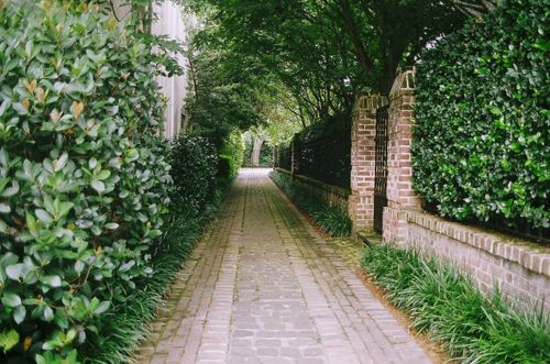 Pathways - Downtown Charleston, SC  by Joshua Trottier