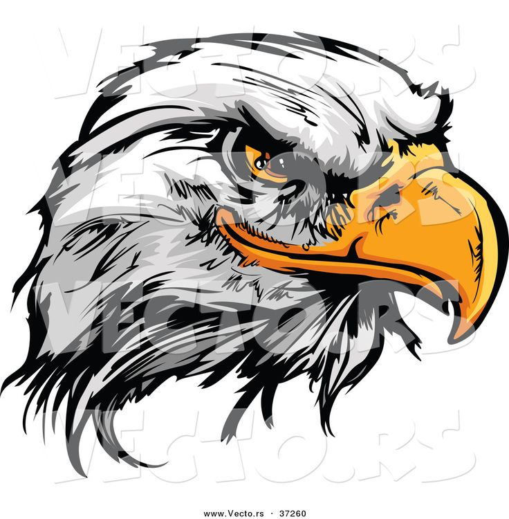 15 best eagles images on pinterest eagles logo google and art google rh pinterest com