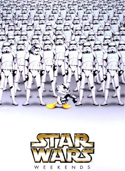 Star Wars Weekends: Favorite Places, Disney Fans, Disney World, Disney Vacations, Stars War Weekend At Disney, Hollywood Studios, Disney Stars War, Disney Hollywood, Disney Fun
