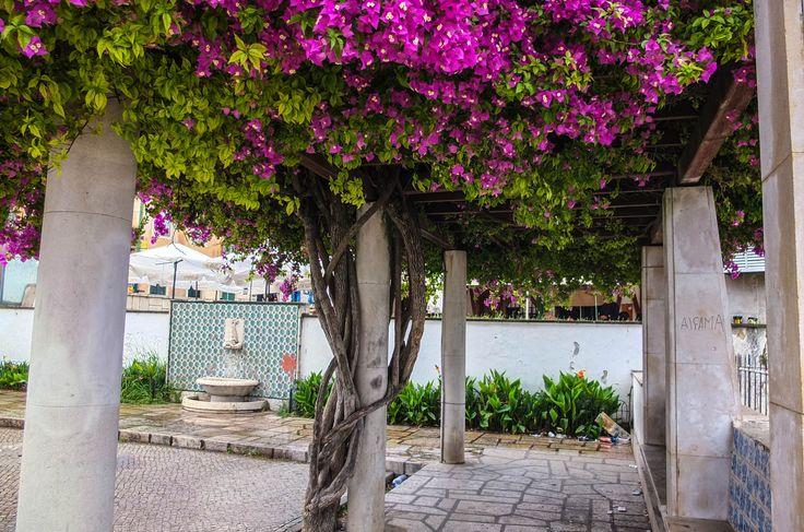 Alfama, Portugal