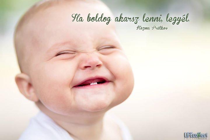 Kozma Prutkov tanácsa a boldogsághoz. A kép forrása: LIFEconnect.hu # Facebook