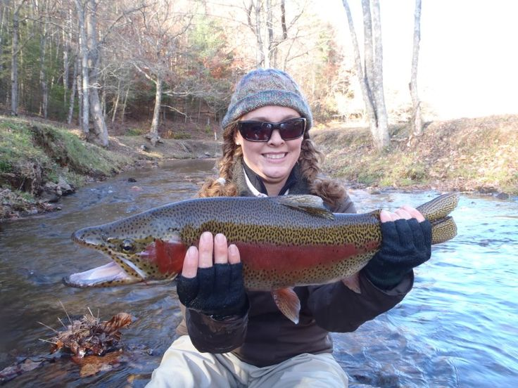 146 best ideas about dahlonega ga my hometown on for Georgia trout fishing map