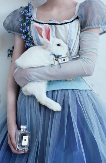 alice fairytale photography | Alice in Wonderland | Photography - Fantasy and…