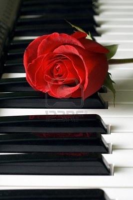 red rose...Piano ♪♫♥.....La música es el corazón de la vida. Por ella habla el amor; sin ella no hay bien posible y con ella todo es hermoso. Franz Liszt