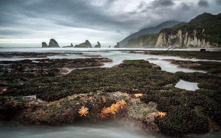 Скачать обои Barrytown, New Zealand, West Coast, раздел пейзажи в разрешении 1920x1200
