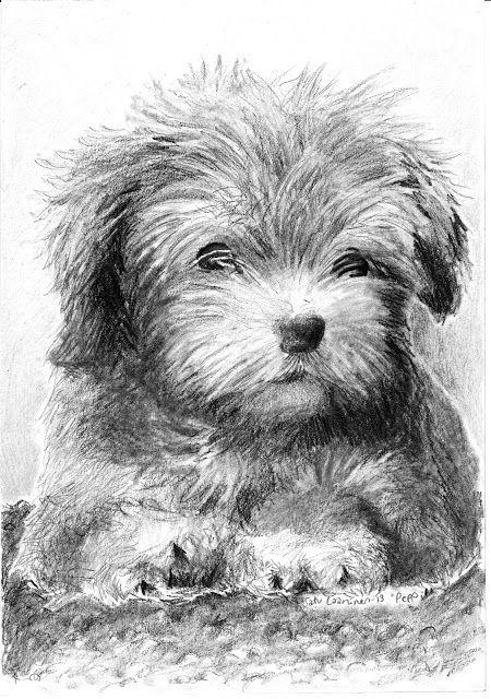 Herkkupurkki: piirros, cute dog, pet, drawing, portrait of a dog By: Satu Laaninen