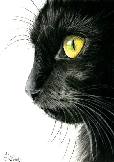 charcoal painting by Angela-Carmen Griehl-Groß - art-ist-art.com