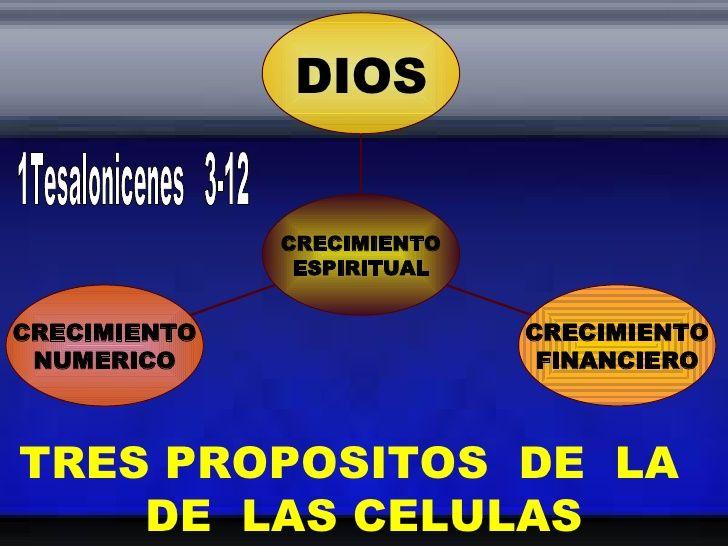 TRES PROPOSITOS  DE  LA  DE  LAS CELULAS 1Tesalonicenes  3-12 CRECIMIENTO NUMERICO CRECIMIENTO FINANCIERO DIOS CRECIMIENTO...