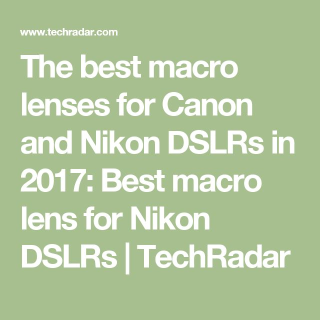 The best macro lenses for Canon and Nikon DSLRs in 2017: Best macro lens for Nikon DSLRs | TechRadar