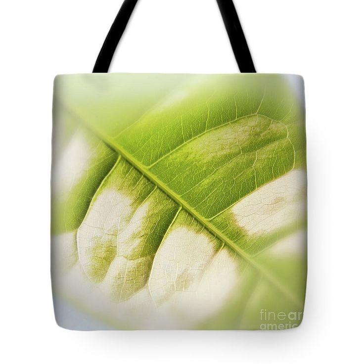 Partly Faded Leaf Soft Tote Bag by Sverre Andreas Fekjan.  The tote bag is machine washable, available in three different sizes, and includes a black strap for…