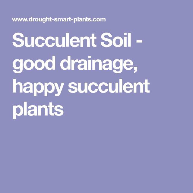 Succulent Soil - good drainage, happy succulent plants