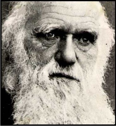 "charles darwins religious beliefs Darwin's religious beliefs nick spencer ""in my most extreme fluctuations i have never been an atheist in the sense of denying the existence of a god"" 1 so wrote charles darwin to john fordyce on 7 may 1879."