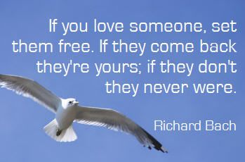Jonathan Livingston Seagull. So true