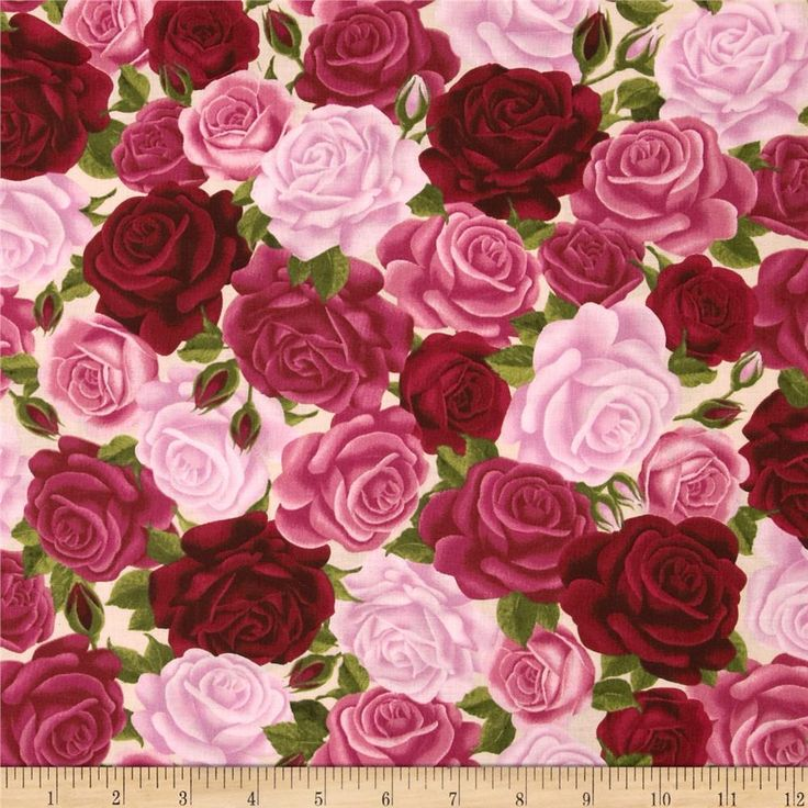 Rosa Packed Roses Red/Pink