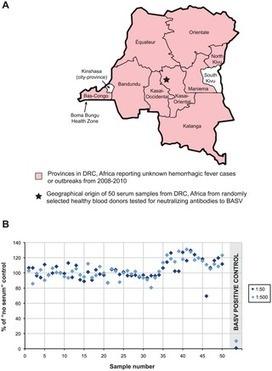 Deep Sequencing Reveals A Novel Rhabdovirus Associated With Acute Hemorrhagic Fever in Central Africa
