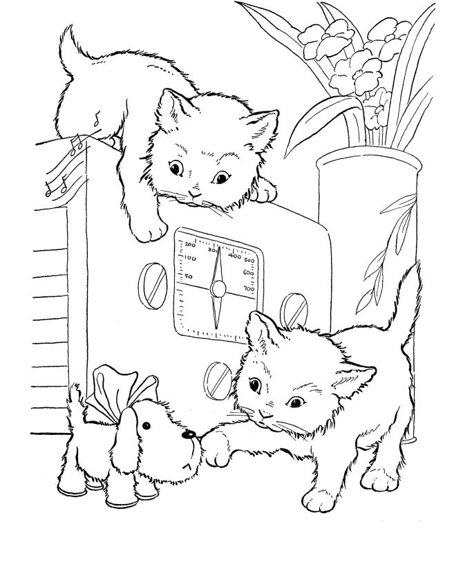cat coloring page playful kittens - Coloring Pages Kittens Print