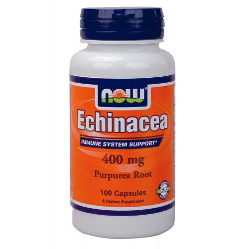 NOW Echinacea Root 400mg 100caps | Familypharmacy.gr