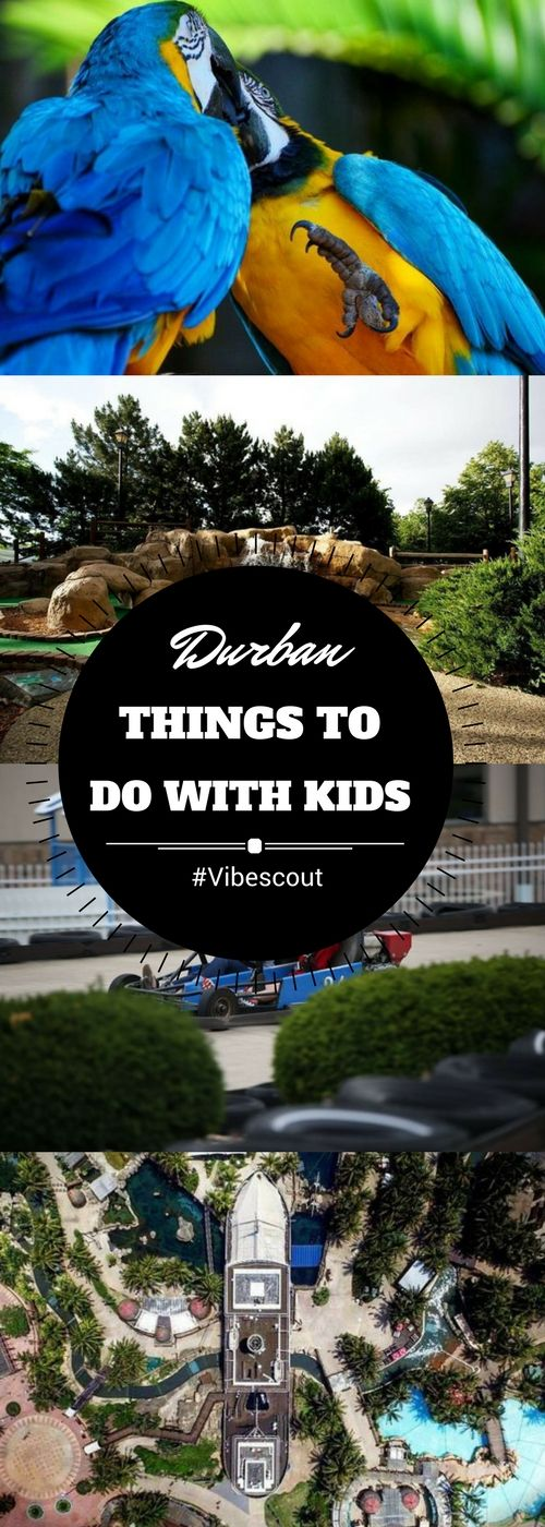 You want to have fun with the kids? Check our list of activities in Durban.