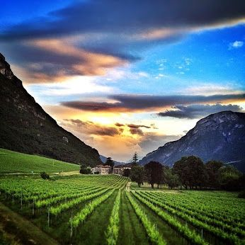 #Villa #Bortolazzi - #Trento #Rovereto #matrimoni #comunioni #cresime #feste #eventi #meeting #foto #instagram #paesaggi #tramonto