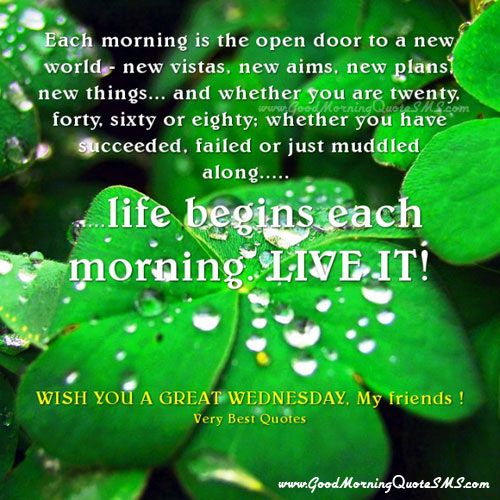 Refreshing Good Morning Quotes: Beautiful Wednesday Morning Wishes