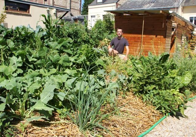 exploit dans son micro jardin joseph produit 300 kilos de l gumes permaculture fils et fruit. Black Bedroom Furniture Sets. Home Design Ideas