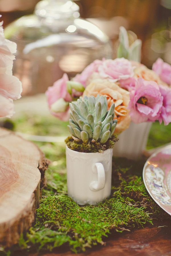 succulents potted in coffee mugs // flowers by bows and arrows // photo by nbarrett