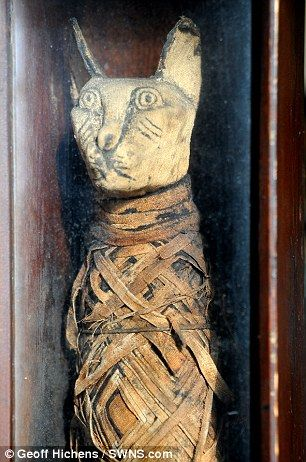 Mummified cat - wouldn't it be cool if the Scroll of Thoth not only revived Imhotep but perhaps a mummified cat in the tomb?