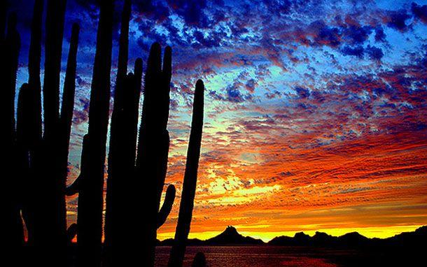 sunset, Sonora, Mexico [La tierra de mi madre...]
