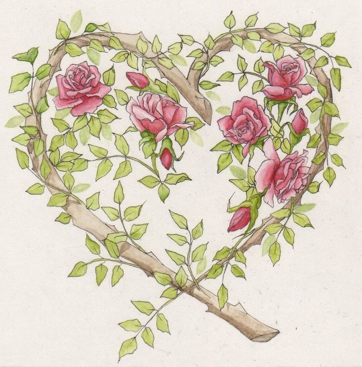 Rose Heart Card by Parrish on Etsy