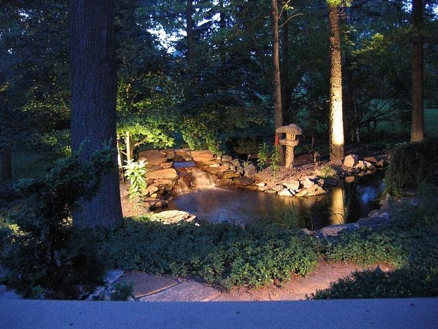21 best pond lighting images on pinterest backyard ponds garden epic pond and evening lighting mozeypictures Images