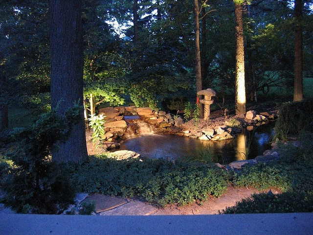 17 Best Images About Pond Lighting On Pinterest Backyard Waterfalls Pond Waterfall And
