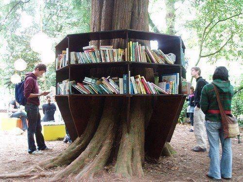 Una libreria che farebbe invidia al nostro cercatore di alberi ;)