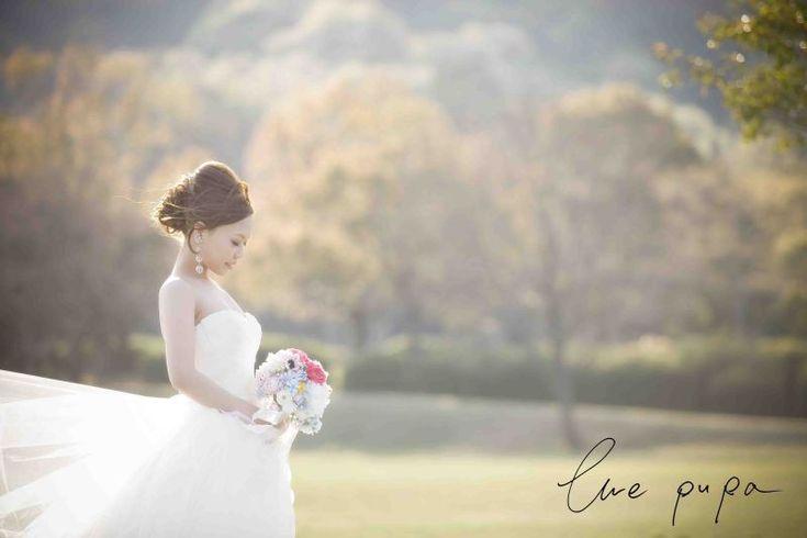 【前撮りレポート】ウエディングドレス × 森 |*ウェディングフォト elle pupa blog*|Ameba (アメーバ)