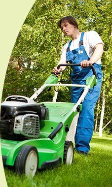 Nous entretenons les espaces verts de votre entreprise ou de votre domicile, nous pouvons également nous occuper de votre potager.
