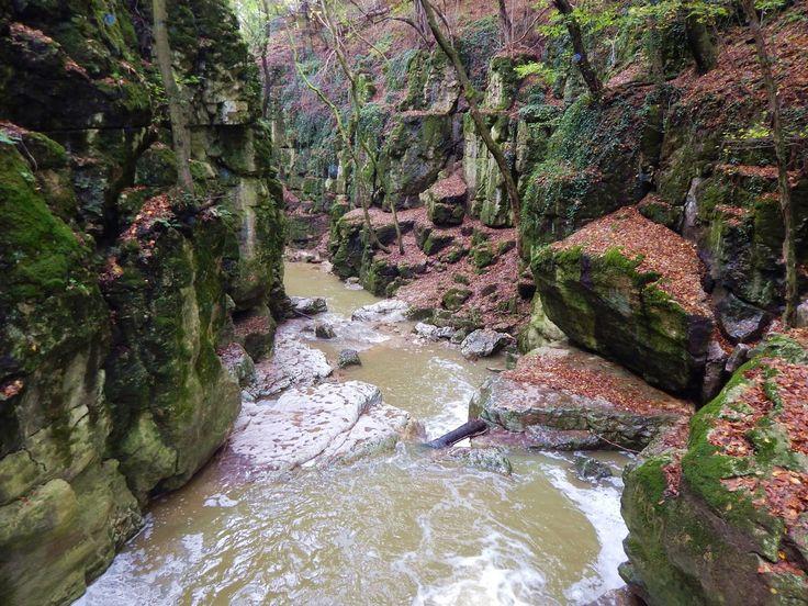 Gaja creek, Bakony-hills