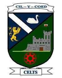 CALDICOT TOWN FC    - CALDICOT - monmouthshire-  welsh