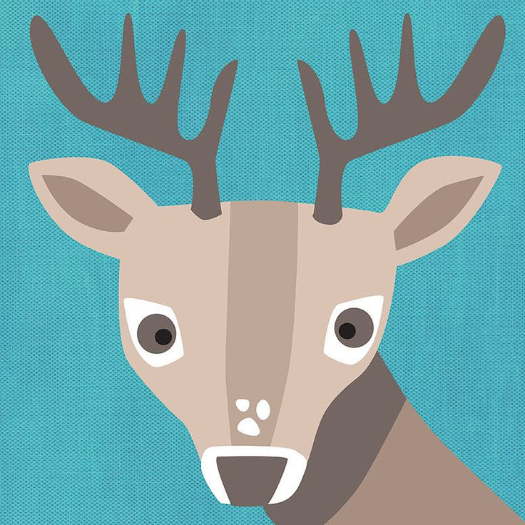 Oopsy Daisy Young Buck Canvas Wall Art