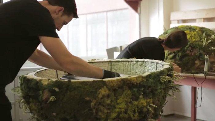 Bistro Agency ukazuje jak navrhovalo instalaci Hlas lesa
