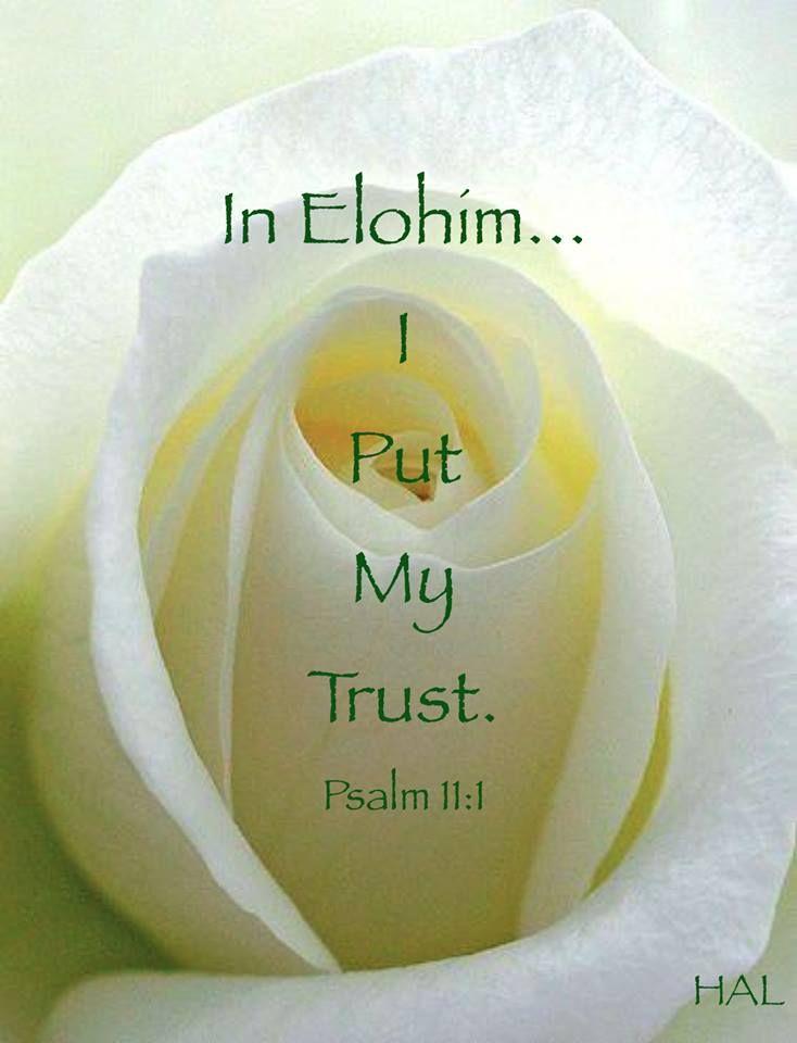 Elohim our Creator...