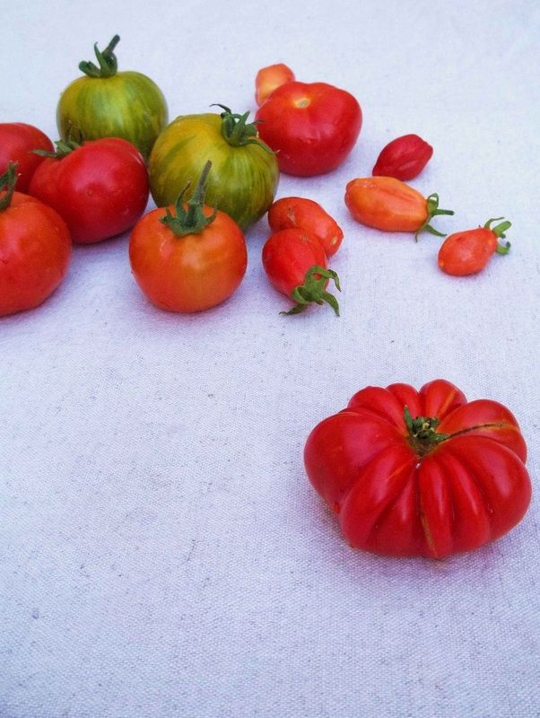 Buy a variety of heirloom tomato seeds. The normal round red shop tomato is most boring when compared to homegrown heirloom tomatoes. Save some of the seeds and enjoy a variety of beautiful and flavourful tomatoes for years to come.