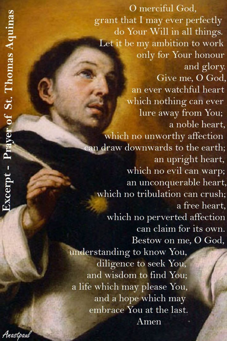 best thomas aquinas quotes saints catholic prayer of st thomas aquinas o merciful god grant that i