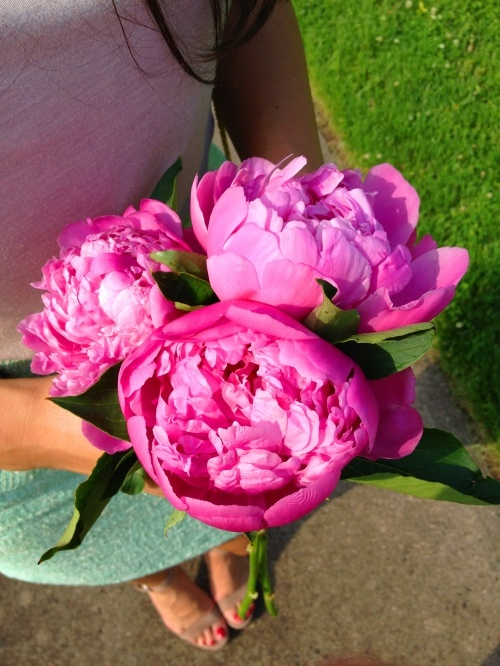 Peonies make the perfect gift every time =)Piñero Style, Tiffany Piñero