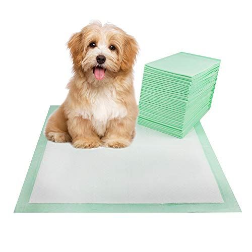 Thxpet Pet Pee Puppy Training Pads Dog Pee Potty Pad 24x 24