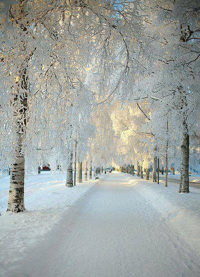 Winter,Sweden