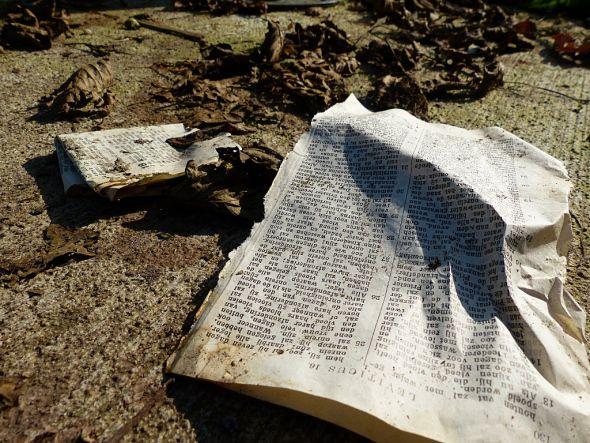 Want het woord van het kruis is voor hen die verloren gaan wel dwaasheid, maar voor ons die behouden worden, is het een kracht van God. (1 Kor. 1,18)