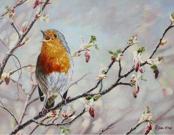 Les 59 meilleures images propos de oiseau sur pinterest aquarelle m sange bleue et aquarelles - Comment faire fuir les oiseaux ...