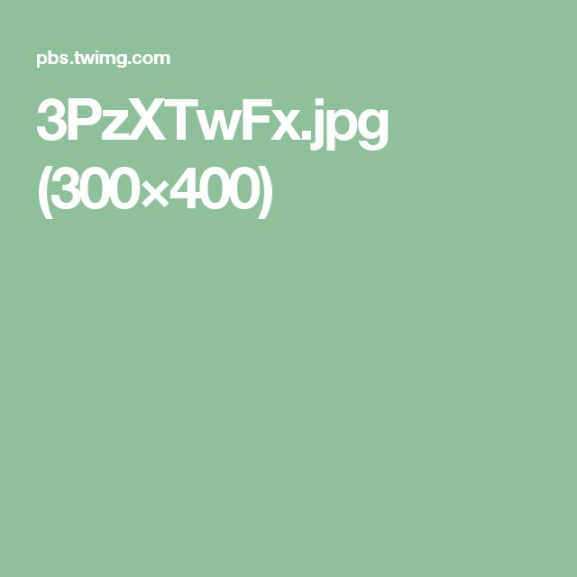 3PzXTwFx.jpg (300×400)