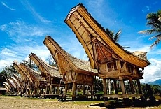Tana Toraja Tourism Travel Guide and Tourist Destination